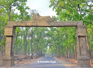 Land Rights Violations at Achanakmar Wildlife Sanctuary, Chhattisgarh
